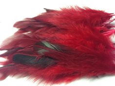 Pack-of-15-Red-dyed-rooster-feathers12-20cm-for-craft-millinery-flyfishing