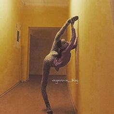 vaganova-blog: Vaganova Ballet Academy - Balletholic