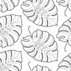 Black And White Graphic Tropical Leaves Seamless Pattern. Palm Tree Background. Textile, Fabric, Texture, Poster. Vector Illustration Royalty Free Cliparts, Vectors, And Stock Illustration. Image 53166272. Palm Tree Background, Tropical Leaves, Palm Trees, Vector Art, Clip Art, Texture, Black And White, Drawings, Illustration