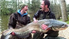 Ritch was at the Beausoleil lake for his third holiday in March 2014 with his mate Mark and fishery owner Matt and had a great session with multiple 30lb carp and 2 catfish. www.frenchcarpandcats.com