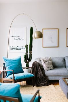The cactus in the living room is the single most expensive item in her home. She can't decide if she should be proud of or embarrassed of that fact.