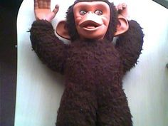 Vintage Chad Valley Jacko Monkey You can see larger pictures on our website by !Chad Valley Jacko Monkey in excellent condition but will need a quick wash and clean. Looks like. 1970s, Monkey, The Past, Youth, Childhood, Dreadlocks, Toy, Memories, Dolls