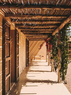 From the Balearic Islands to the border of Portugal, we're bringing together our collection of Spanish rural retreats to inspire your next sabbatical. Mediterranean Architecture, Mediterranean Style, Arch Architecture, Timber Pergola, Spanish Islands, Exposed Rafters, Terrazo, Rural Retreats, Old Farm Houses
