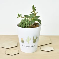 This funny plant pot is perfect for brightening up your home and can be personalized on the reverse with your own message.  A humorous ceramic plant pot ideal for your indoor cacti and succulents.  A wonderful gift for any keen gardener or green fingered friend who loves their cacti.