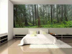 Washington National Park Rain Forest Wall Mural