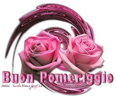 Buon pomeriggio rose