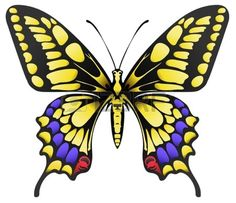 papillon: illustration de papillon machaon jaune grande isolé sur blanc