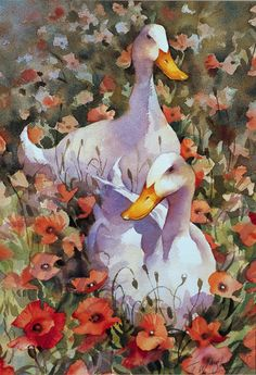 """Ducks and Poppies"" watercolour by Trevor Waugh ©"