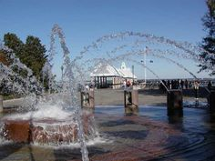 Interactive Fountain at the Charleston Waterfront Park Charleston Sc Attractions, Battery Park, Rustic Restaurant, Southern Hospitality, Old World Charm, French Quarter, Walking Tour, South Carolina, Places Ive Been