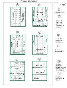 Plan de petit potager Plus - Diy Garten Small Vegetable Gardens, Vegetable Garden Planning, Vegetable Garden For Beginners, Gardening For Beginners, Gardening Tips, Organic Gardening, Urban Gardening, Vegetable Gardening, Vegetable Ideas