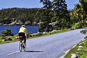 Bike Trails in Acadia National Park, Maine.