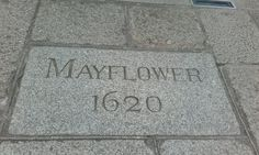 May Flowers, Bath Mat, Home Decor, Cornwall, Travel, May Birth Flowers, Interior Design, Home Interior Design, Bathroom