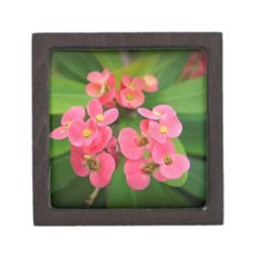Choose from a variety of Flower gift boxes on Zazzle. Our keepsake boxes are great places to hold valuables like jewelry. Wedding Signs, Wedding Favors, Crown Of Thorns, Self Inking Stamps, Keepsake Boxes, Bumper Stickers, Spring Wedding, Postage Stamps, Iphone Case Covers