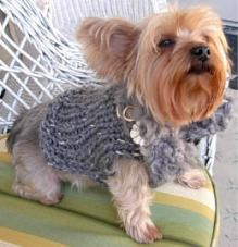 'Furrrocious' Dog Sweater With Detachable Hoodie or Faux Fur Collar Dog Sweater Pattern, Crochet Dog Sweater, Dog Pattern, Free Pattern, Dog Crochet, Crochet Pattern, Crochet Dog Clothes, Diy Yorkie Clothes, Pet Clothes