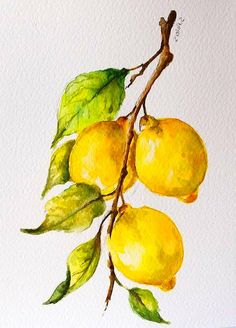Best Picture For Watercolor Painting fashion For Your Taste You are looking for something, and it is Lemon Painting, Lemon Watercolor, Fruit Painting, Watercolor Landscape, Abstract Watercolor, Watercolor Illustration, Watercolor Flowers, Simple Watercolor, Watercolor Animals