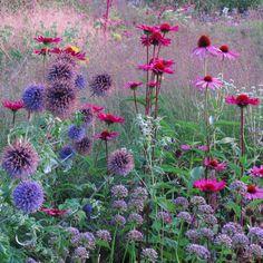 Adorable 80 Beautiful Front Yard Cottage Garden Landscaping Ideas source : whole. Cottage Garden Design, Beautiful Gardens, Meadow Garden, Modern Garden, Lavender Garden, Outdoor Gardens, Garden Planning, Garden Landscaping, Cottage Garden