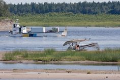 2009 August - Cessna C-GRVX ended up upside down on the sandbar in the Moose River at Moosonee. Images show aircraft on sandbar and its uprighting and recovery. Present Day, Image Shows, Ontario, Vintage Photos, River, Vintage Photography, Rivers