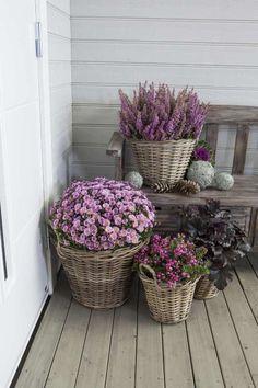 pynt_ute_med_lyng_og_krysantemum_host - Most creative decoration list Boho Home, Hippie Home Decor, Bohemian Decor, Diy Home Decor, Hippie House, Decor Scandinavian, European Home Decor, Small Space Gardening, Container Flowers