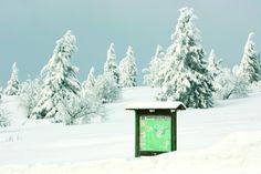 Ski de fond au Champ du Feu - #Alsace
