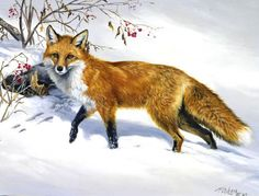 Gallery / Out Foxed.jpg