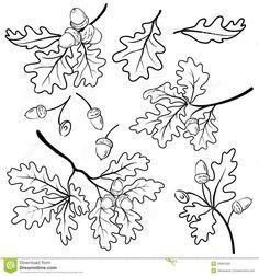 oak leaf tattoos - Google Search