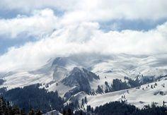 Ilgaz Dağları - Turkey