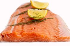 (1) Doručené – Seznam Email Fish, Meat, Pisces