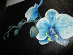 Blue orchid by just-the-beginning.deviantart.com on @DeviantArt