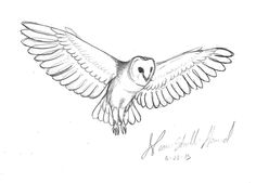 Quick Barn Owl Sketch by Neon-Skull-Hound. Just a quick sketch.  ©Neon-Skull-Hound