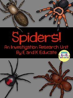 Eeek! Spiders! Nonfiction Unit by EandKeducate | Teachers Pay Teachers