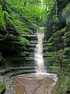 French Canyon at Starved Rock State Park after a heavy, spring rain! Photo by Kathy Casstevens.