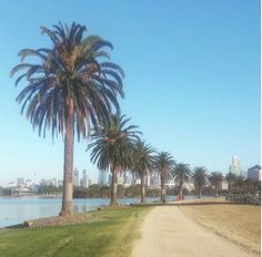 Albert Park Lake, Melbourne, Victoria | 24 Breathtaking Australian Walks To Take In 2016
