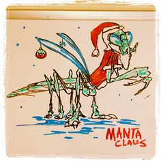 Manta Claus, whiteboard doodle (originally from my @bokaier instagram)