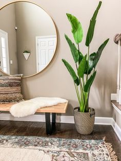 boho chic decor, eclectic decor, eclectic entryway, entryway bench decor, modern… - Home Professional Decoration Bench Decor, Cool Apartments, Apartments Decorating, Condo Decorating On A Budget, Small Hallway Decorating, Diy Home Decor For Apartments, Decor Room, Living Room Plants Decor, Home Decor With Plants