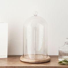 Regular Glass Dome Bell Jar