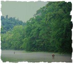 Elk River - TN | Kayak Trip / Canoe Trip - Paddling.net