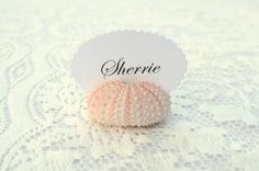 Natural Pink Sea Urchin Place Card Name Holders by BeachyChicDecor