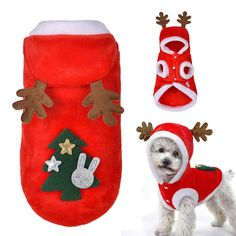 Dog Christmas Clothes, Christmas Costumes, Christmas Animals, Winter Christmas, Christmas Tree, Yorkshire Terrier, Cute Coats, Pet Paws, Pet Fashion