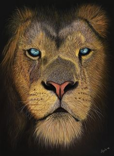 Lion Fine art print: The King's Gaze. Art print of my lion pastel painting, amazing gift idea for any animal lover! Surrealism Painting, Art Corner, Speed Paint, Watercolor Paintings, Original Artwork, Fine Art Prints, Best Gifts, Creatures, The Incredibles