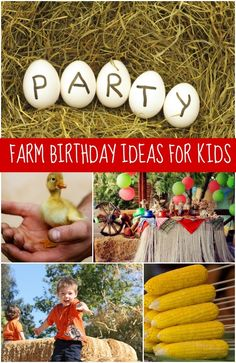 Boy's Farm Birthday Party Ideas