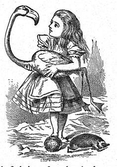 Alice, illustration from Lewis Caroll Novel