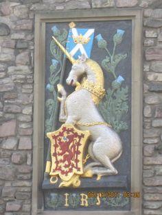 Image of: Unicorn The Unicorn Is Scotlands National Animal Pinterest 267 Best Scotland Images Scotland Travel Travel Inspiration Ireland