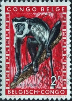 Stamp: Angolan Colobus (Colobus angolensis) (Belgian Congo) (Animals) Mi:BE-CD 356 Rare Stamps, Old Stamps, Belgian Congo, Orangutan, My Stamp, Postage Stamps, Black History, Ephemera, Black And White