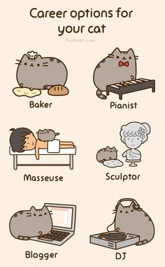 career options for your cat  http://pusheen.com/post/27733466731