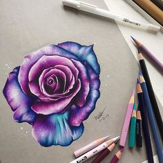 Hello Everyone here s this pink purple blue rose drawing i did this took a lot longer than i expected but hey i guess it turned out decent lolll hope you like this drawinggg made with prismacolor pencils on strathmore toned gray paper # Colorful Drawings, Cute Drawings, Colored Pencil Techniques, Toned Paper, Color Pencil Art, Color Pencil Drawings, Pink Purple, Pink Lila, Art Sketches