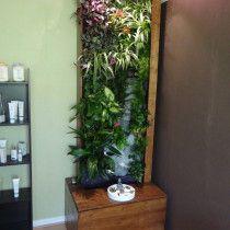 Mur végétal dans salon esthétique