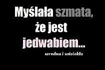 Cytaty na Stylowi.pl Scary Funny, Wtf Funny, Funny Lyrics, Me Quotes, Funny Quotes, Sad Life, My Guy, Man Humor, True Stories