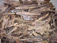 عود ودهن العود Agarwood Aloeswood Oudh, Attar Perfume Oil Store: Malaysia Agarwood Oudh B