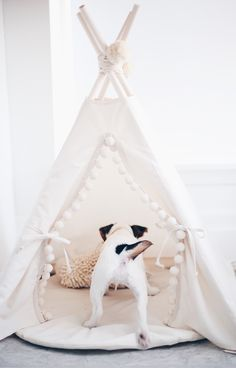 Pet Bed Roundup: 18 Cute Beds You Won't Mind Leaving Out Stephanie Sterjovski puppy tent - Monde Des Animaux Cute Dog Beds, Puppy Beds, Cute Dogs, Best Dog Beds, Pet Beds For Dogs, Pet Beds Diy, Cute Dog Stuff, Pet Puppy, Kinder Chocolate Cake