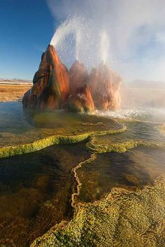 Absolutely Amazing! Fly Geyser, Nevada #photography #travel #business